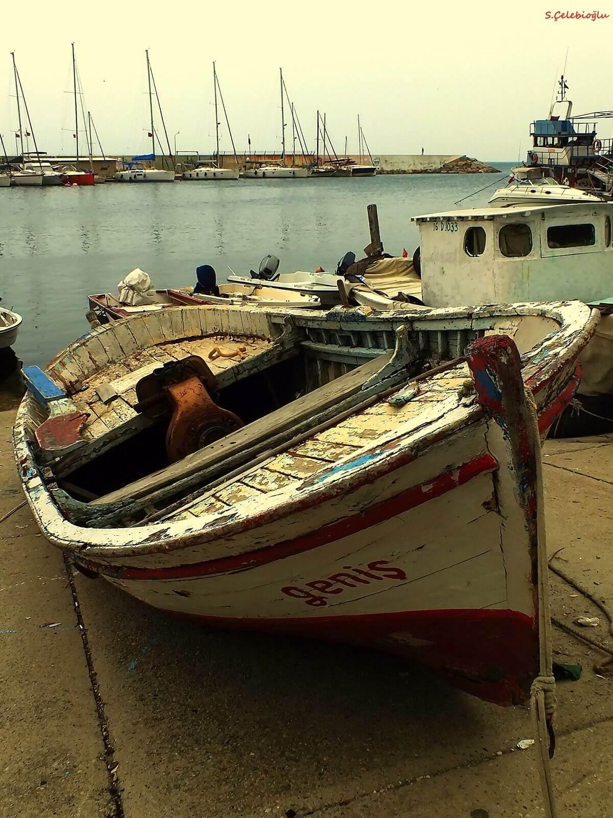 Tirilye Limanı
